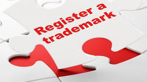 intellectual property rights in coimbatore